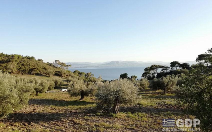 Plot of land for sale near Loutraki