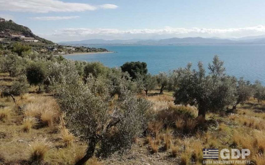 Seafront Plot of land with private beach on sale in Gulf of Corinth (Loutraki, Greece)